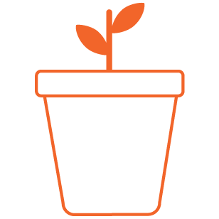 chapter planting