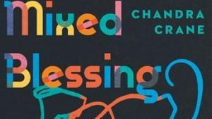 Mixed Blessing Book Cover Image